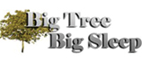 Big Tree Big Sleep at Stylehouse Furnishings